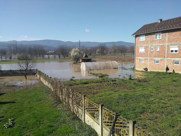 poplave113
